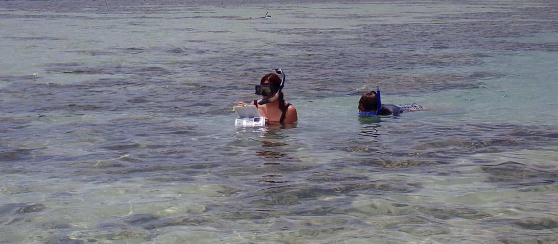 Learning how to do transects and collect data underwater.